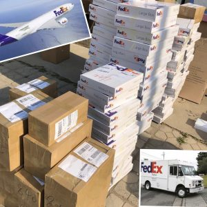 Fedex Packaging Boxes